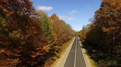 Aerial View Autumn Forest with Road Stock Footage