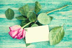 Blank greeting card and dry roses - stock photo