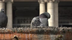 ULTRA HD 4K real time shot,The Basilica of St. Mary Major, Rome Stock Footage