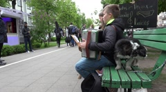 Stock Video Footage of boy kid play with accordion. Small dog. 4K