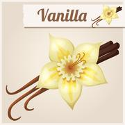 Vanilla. Detailed Vector Icon - stock illustration
