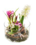 Stock Photo of Spring Deco