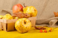 Yellow pears and pink apples - stock photo