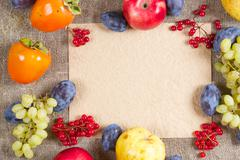 Fall fruits and berries.Background. Stock Photos