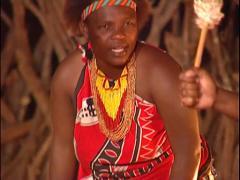 Zulu Camp,  Ladies Traditional Drumming & Singing Stock Footage