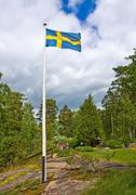 Flag in Swedish pastoral - stock photo
