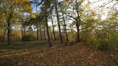 Dangerous bike ride downhill through narrow broadleaf forrest with sun shining Stock Footage