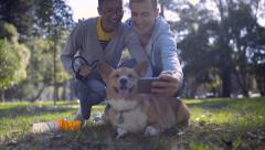 Man Takes Selfie With His Boyfriend And Cute Pembroke Welsh Corgi Dog, In Park Stock Footage
