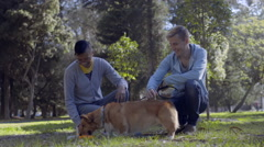 Happy Gay Couple Pet Their Corgi, While He Drinks Water From Dish, In The Park Stock Footage