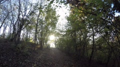 Moving towards sepulcher during sunny autumn day through broadleaf forrest Stock Footage