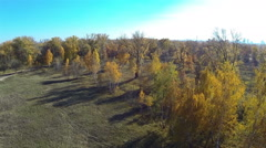 Autumn park with a bird's-eye view Stock Footage