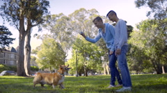 Gay Couple Play Fetch With Their Dog In Neighborhood Park, San Francisco Stock Footage
