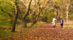 People walking in Drumpellier Country Park, Coatbridge, Scotland - stock footage