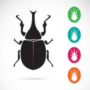Vector image of stag beetle on white background Stock Illustration