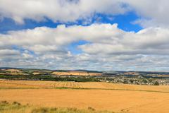 Wheat field and blue sky with clouds at shore line close to North sea, Aberde - stock photo