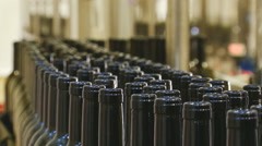 View of Industrial line for bottling wine - stock footage
