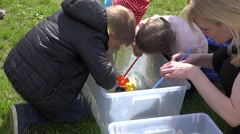 Kids play duck race in small water pool. 4K Stock Footage