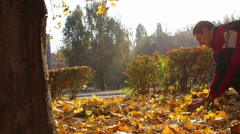 A men throws yellow leaves from the tree branches of trees in autumn park - stock footage