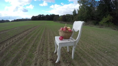 Antique wooden chair on  field in autumn and apple wicker basket. Timelapse 4K Stock Footage