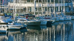 Rows of boats in marina in adriatic sea bay harbor in Pula, Croatia in summer - stock footage