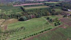Apple tree farm in the Annapolis Valley Stock Footage