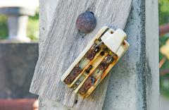 Old retro and broken dirty rust electric circuit breaker mounting on wood - stock photo