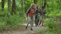 4K Group of friends hiking in the woods walking along a forest trail. - stock footage