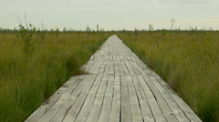 Wooden pathway in the national swamp reserve. Autumn daytime. Smooth dolly shot. Stock Footage