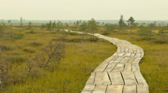Wooden walkway in the national wildlife reserve. Autumn daytime. - stock footage