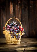 Grape clusters in the basket on rustic wooden background. Fall harvest season - stock photo