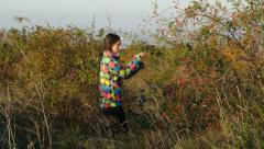 Young woman picking dog rose bush. Stock Footage