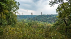 Forest Overlook High Dynamic Range Mammoth Cave National Park - stock footage
