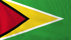 Flag of Guyana waving in the wind, seemless loop animation Stock Footage