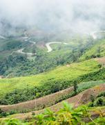 Misty over the sharp curve road - stock photo
