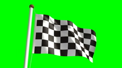 Chequered flag (with green screen) Stock Footage