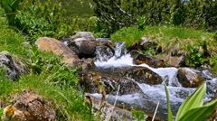 Fast flowing water of a mountain brook, dolly Stock Footage