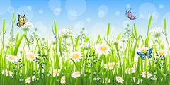 Flower meadow in summer with butterfly - stock illustration