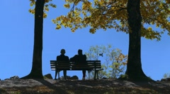Couple on a bench at lake Kochel in Autumn, Bavaria, Germany Stock Footage