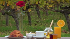 French breakfast on vineyards background, Stock Footage