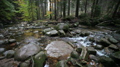 Stock Video Footage of Stream in Karkonosze Mountains