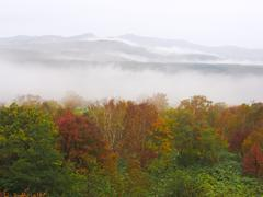 Autumn scene with mountains in fog - stock photo