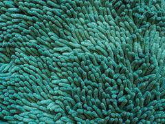 Green carpet fiber hair Stock Photos