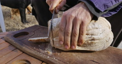 Cutting homemade bread Stock Footage