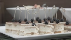 Stock Video Footage of High class catering service food-Cake