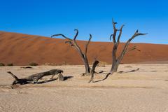 Stock Photo of beautiful landscape of Hidden Vlei in Namib desert panorama