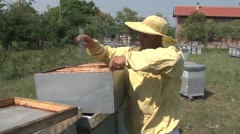 Beekeeper checking hive frames Stock Footage