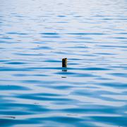 ripple surface of the water with snag - stock photo