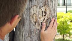 Heart Carved in Tree with Man Handheld Stock Footage