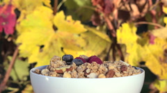 poured red fruits on muesli - stock footage
