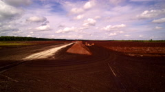 The peat field with flowers on the side Stock Footage